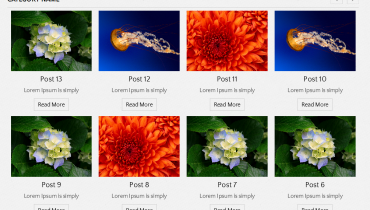 Multi Post Carousel by Category